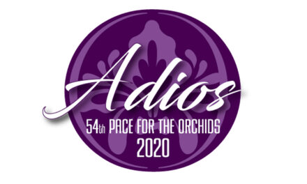Fields set for Adios Eliminations