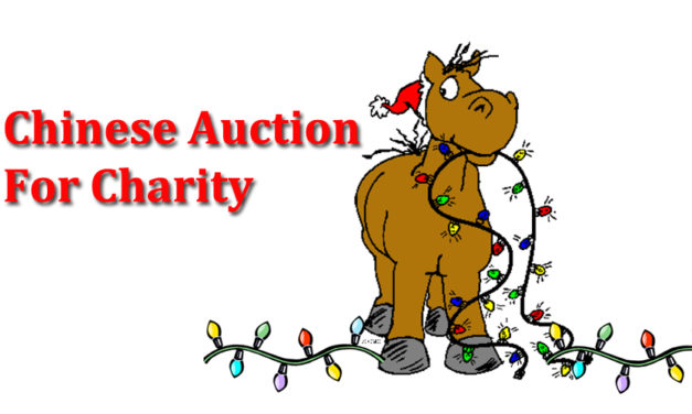 Chinese Auction Postponed