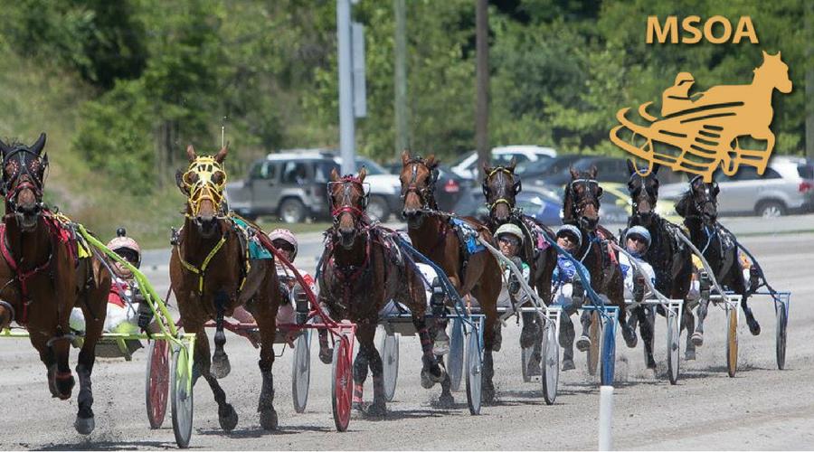 Unlocked, Medusa share MSOA Horse of the Year honors