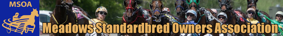 The Meadows Standardbred Owners Association