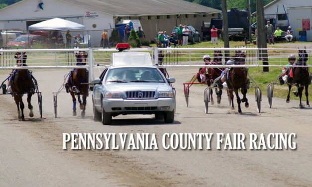 State releases 2021 Fair Schedule