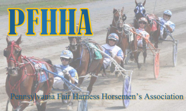 Harness Racing Returns to Somerset, PA Fair