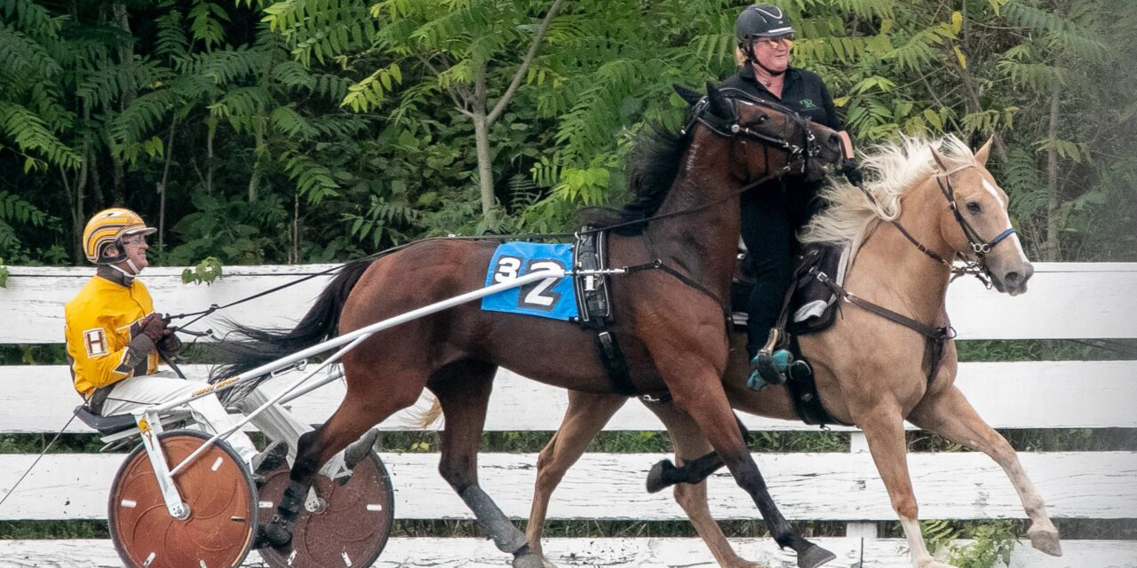 Outrider Rothfuss featured in article