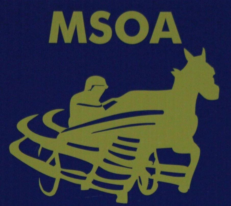 MSOA announces 2015 award winners